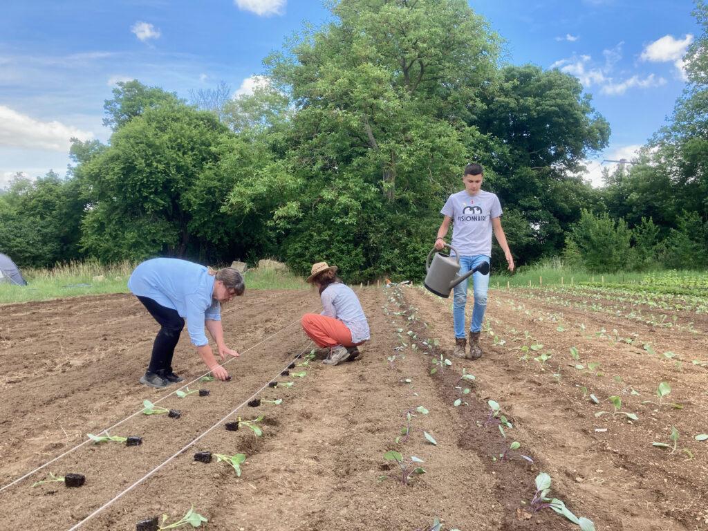 Stagiaires et bénévoles participent aux activités de la ferme